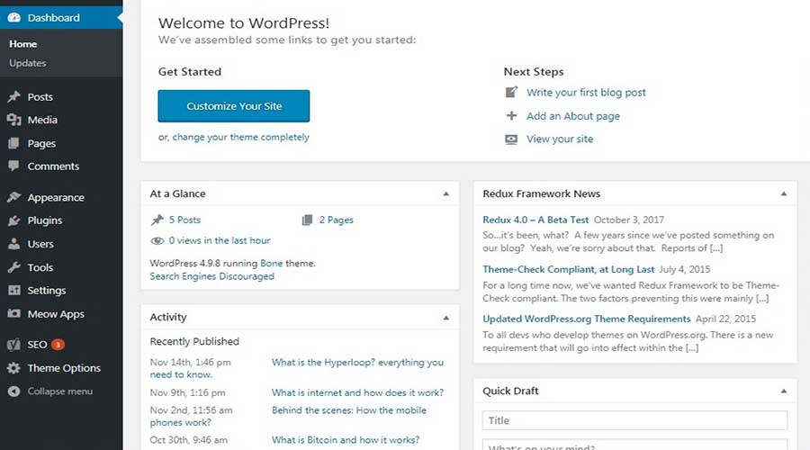 WordPress Interface
