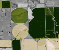 satellite crop monitoring